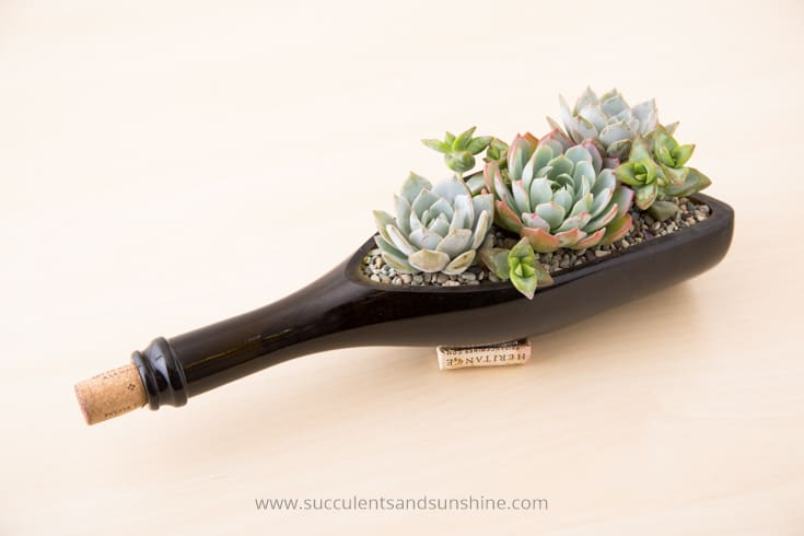 USE A WINE BOTTLE AS A PLANTER