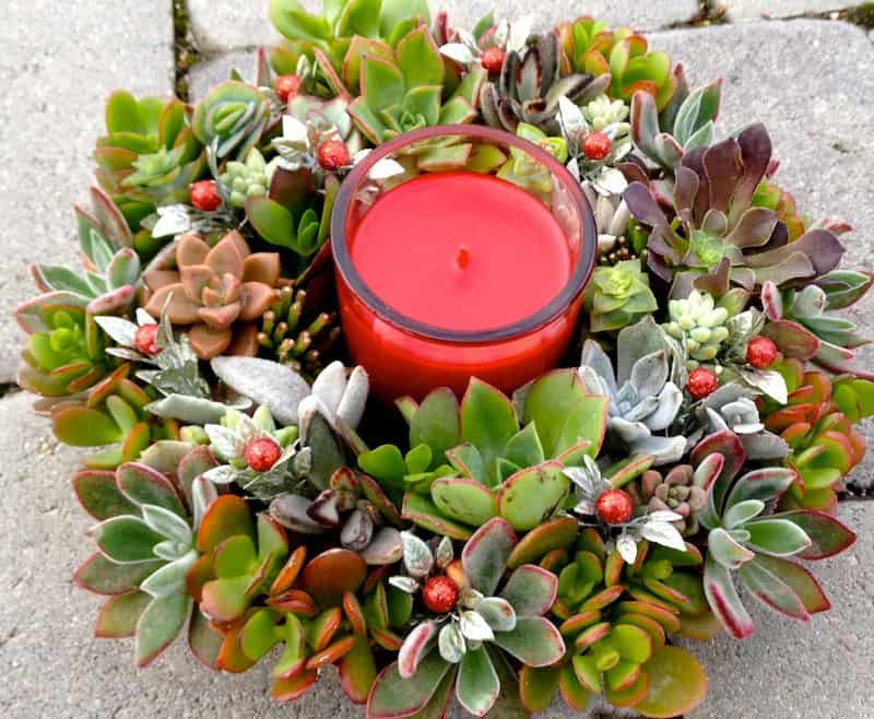 CREATE A SUCCULENT WREATH TO HOLD YOUR CANDLES
