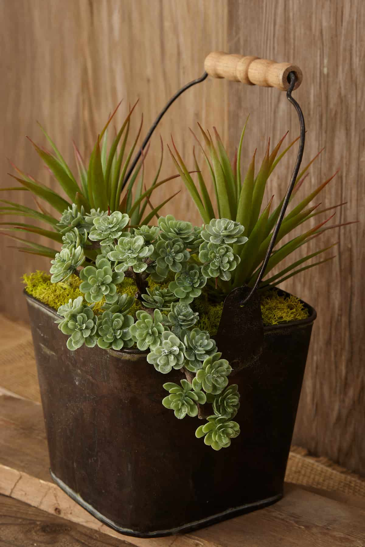 RECYCLE A METALLIC BUCKET INTO A SUCCULENT ARRANGEMENT