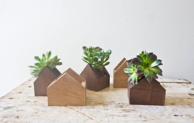 FORM TINY WOODEN MINIMAL HOMES FILLED WITH SUCCULENTS