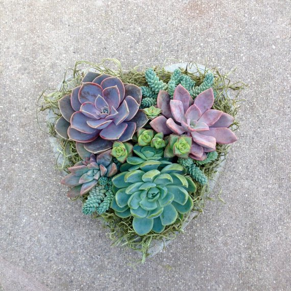 FORM A CONCRETE HEART PLANTER AND DECORATE YOUR HOME WITH THE ARRANGEMENT