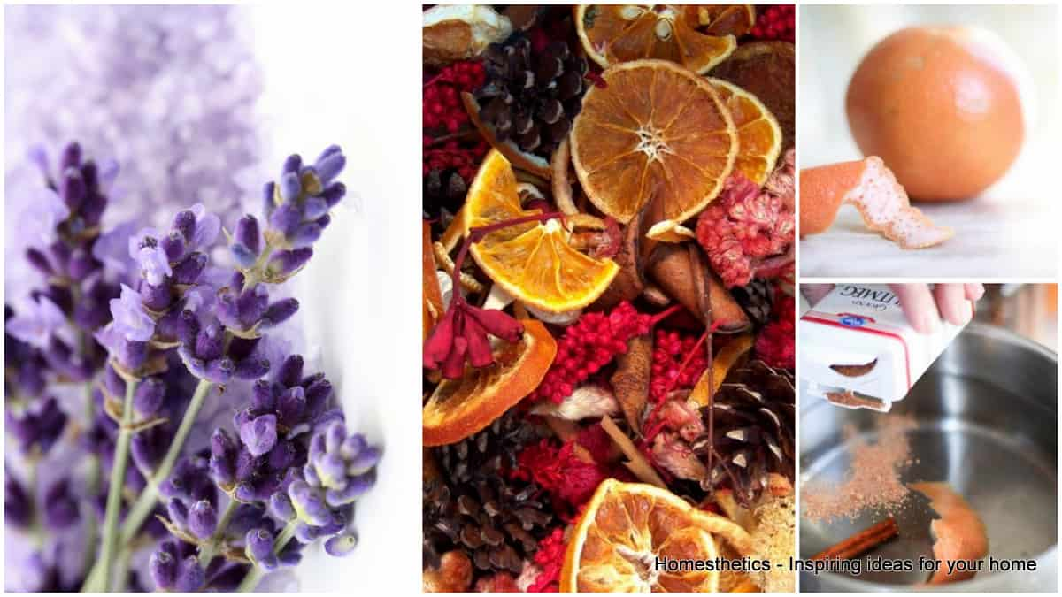 Invigorate Your Home With Worlds Best 9 DIY Air Fresheners