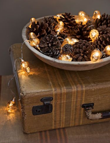 10. ACORN LIGHTS CAN ANIMATE PINE-CONES