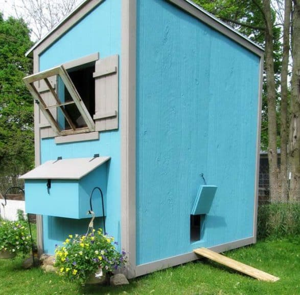 CHICKEN COOP SHED