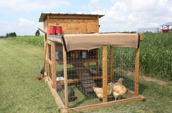 WOODEN CHICKEN TRACTOR
