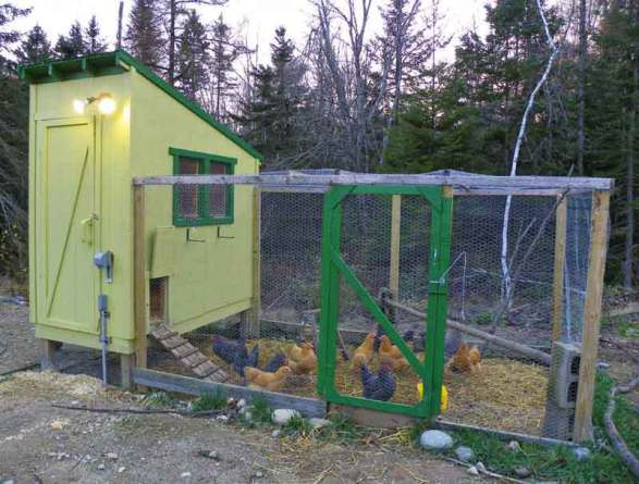 . GREEN IN GREENERY FARM CHICKEN COOP