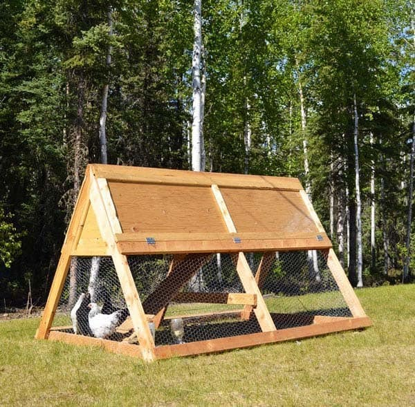 SIMPLE TRIANGULAR CHICKEN COOP