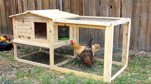 ONE SMALL CHICKEN COOP