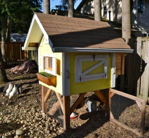 THE LITTLE CHICKEN COOP BY TRICTLE