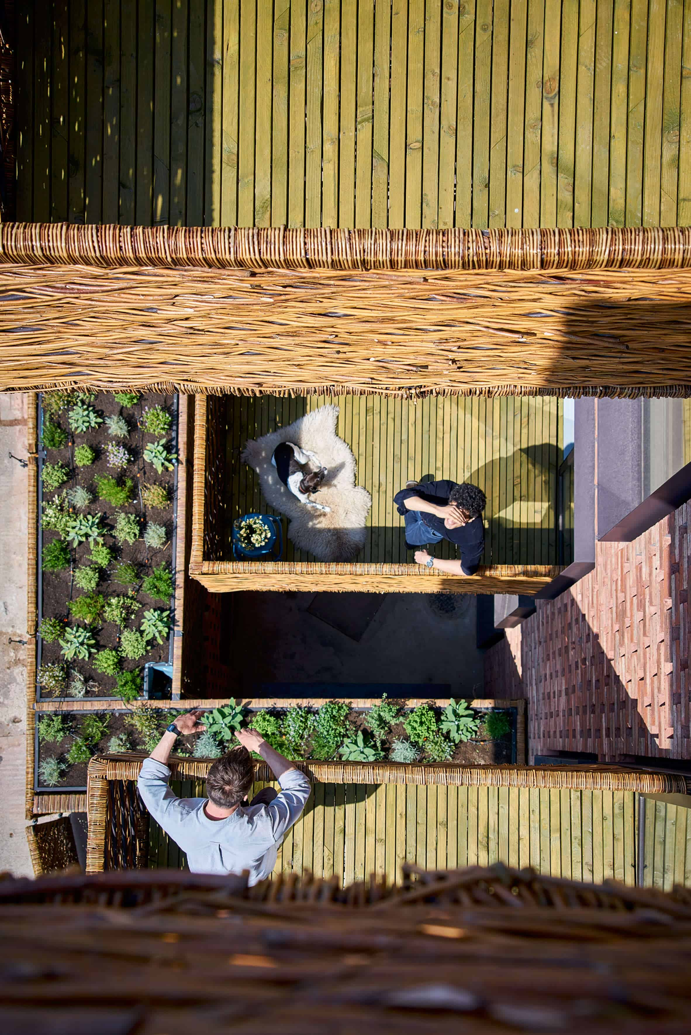Cross Laminated Timber Wrapped in Brick by Amin Taha Architects 2