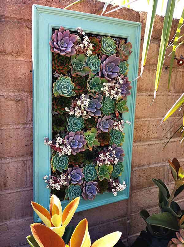 31. NESTLE SUCCULENTS IN A BEAUTIFUL FRAME