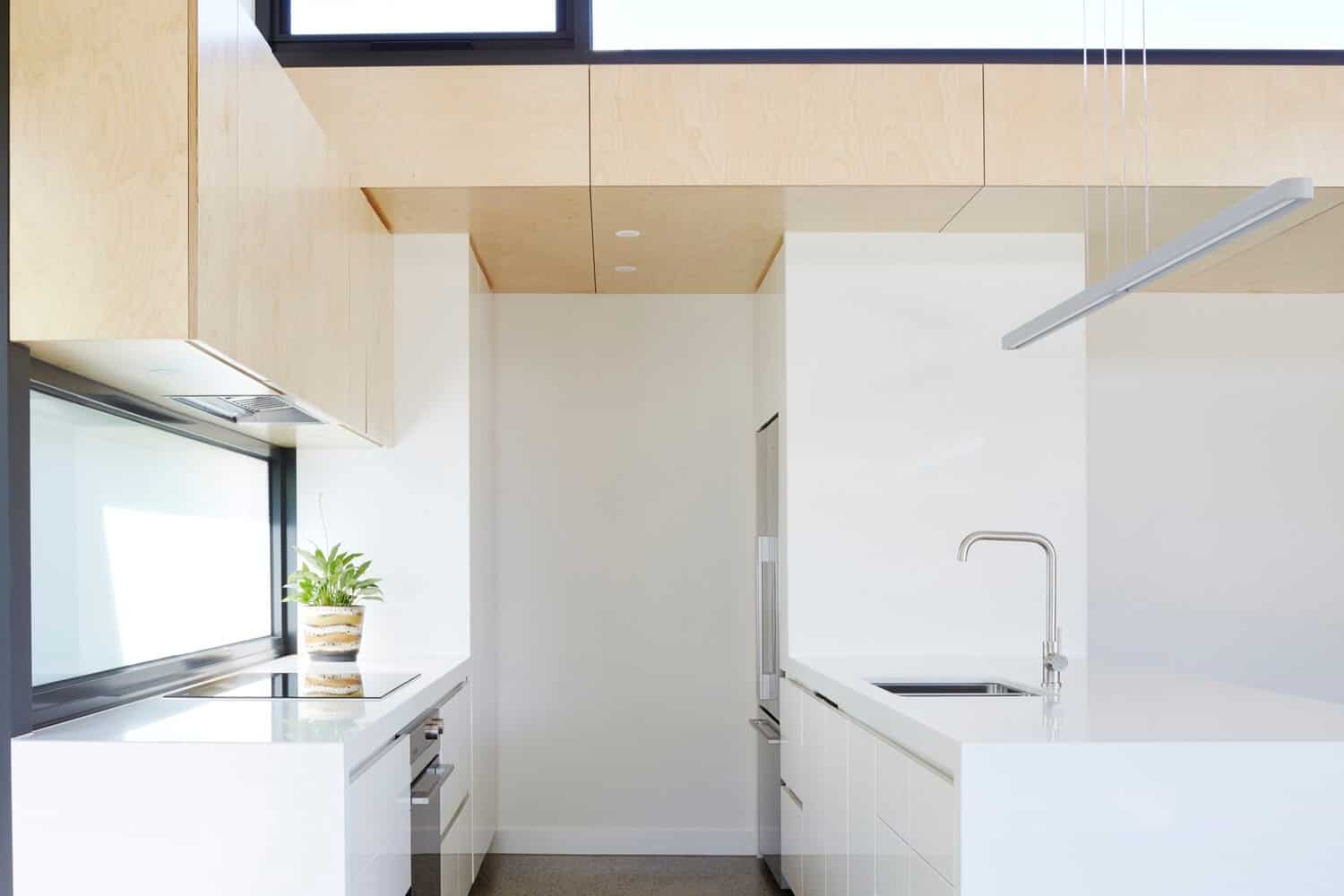 Victorian Home Updated with Modern Pod by Nic Owen Architects 7