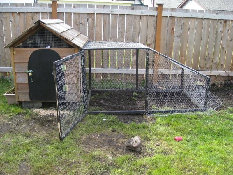 DOG HOUSE TRANSFORMATION