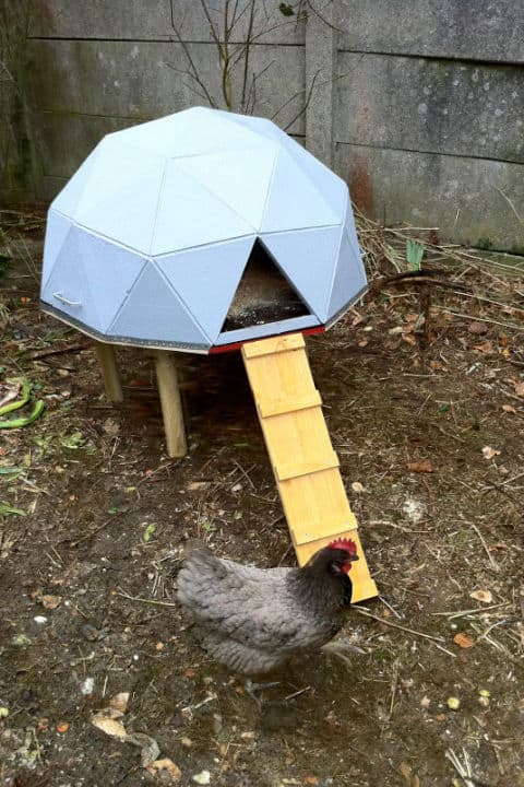 GEOMETRIC CHICKEN COOP SHELTER