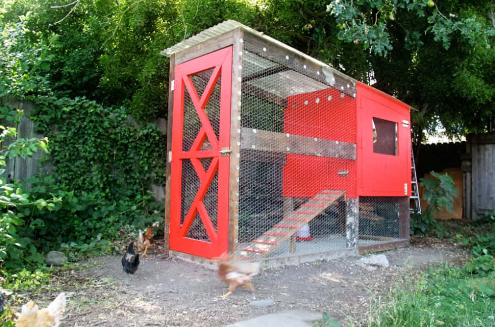CONTEMPORARY RUSTIC RED CHICKEN COOP