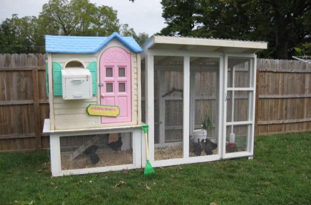 TAILOR A CUTE MINI-CHICKEN RANCH