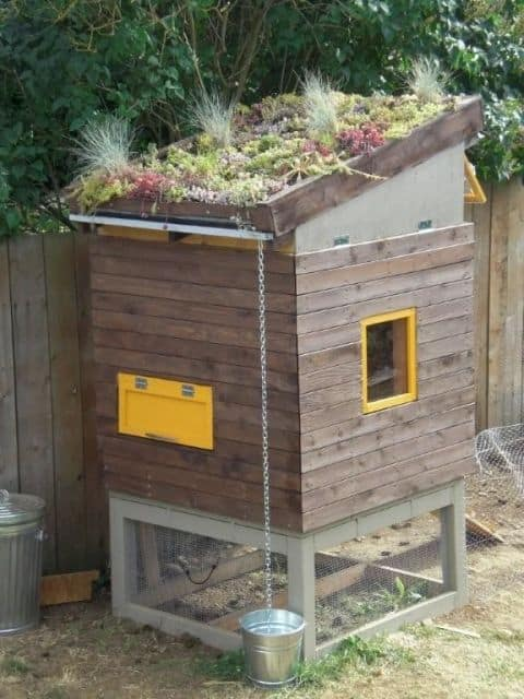URBAN CHICKEN COOP DESIGN