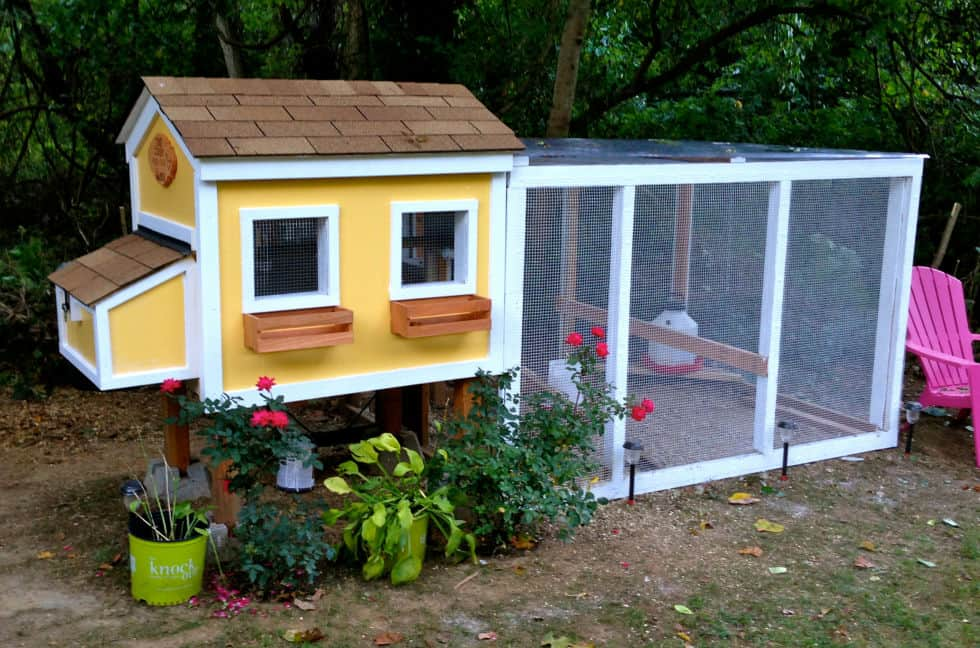 57 diy chicken coop plans in easy to build tutorials 100 for Domestic garden ideas
