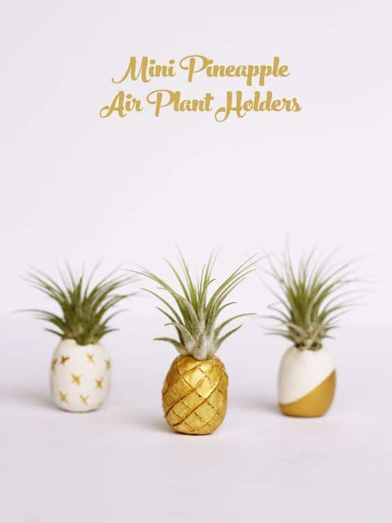 AIR PLANT HOLDERS SHAPED LIKE PINEAPPLES