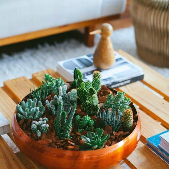 How To Decorate Your Coffee Table With Grace and Style homesthetics 11