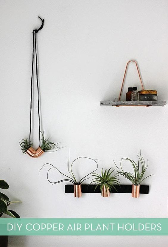 DIY COPPER AIR PLANT HOLDERS