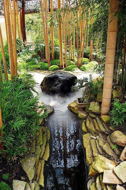 27. Bamboo garden nourished by water