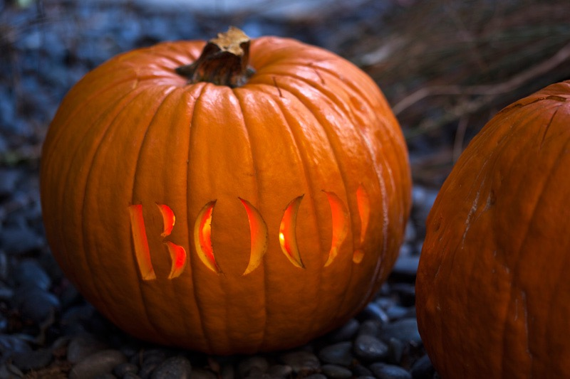 "79. A SIMPLE ""BOO"" MESSAGE MIGHT DO"