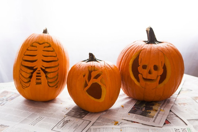 81. ANATOMY PUMPKIN CARVINGS FOR DOCTORS