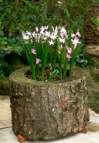 12. WOODEN STUMP FLOWER POT