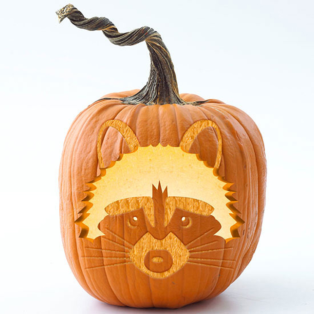 89. RACCOON PUMPKIN CARVING