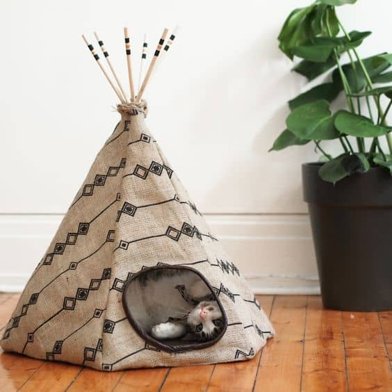 15 super fun diy cat tent ideas to pursue homesthetics inspiring ideas for your home. Black Bedroom Furniture Sets. Home Design Ideas