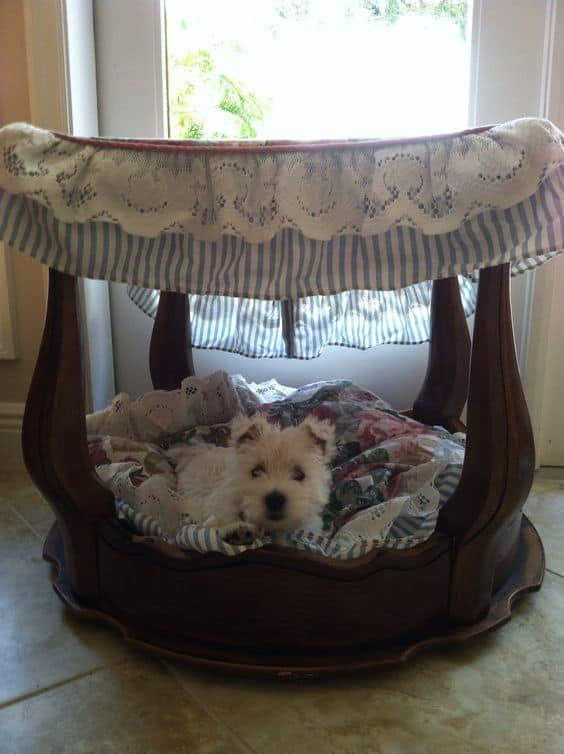 29. SIDE-TABLE BECOMES CANOPY DOG BED