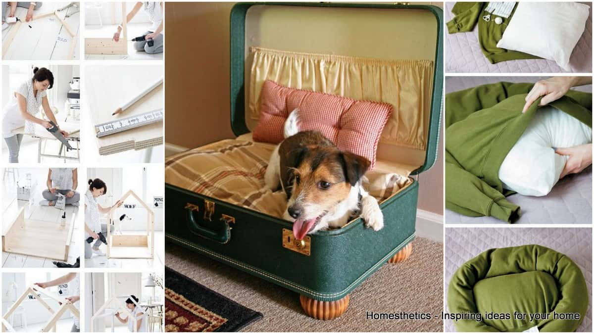 29 Epic DIY Dog Bed Ideas For Your Furry Friend