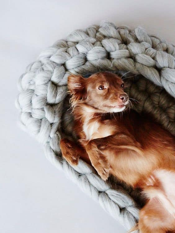 28. DIY KNITTED DOG BED
