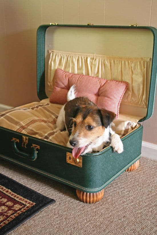 19. DIY TRAVEL BAG DOG BED