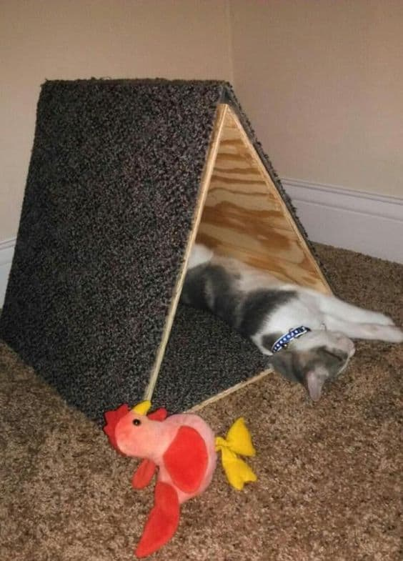 15 super fun diy cat tent ideas to pursue homesthetics for Diy cat teepee