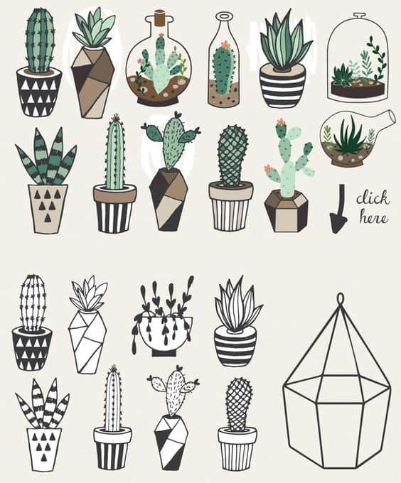 cute geometric potted plants illustrations