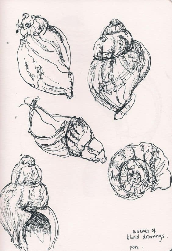 SEASHELLS FAST SKETCHES