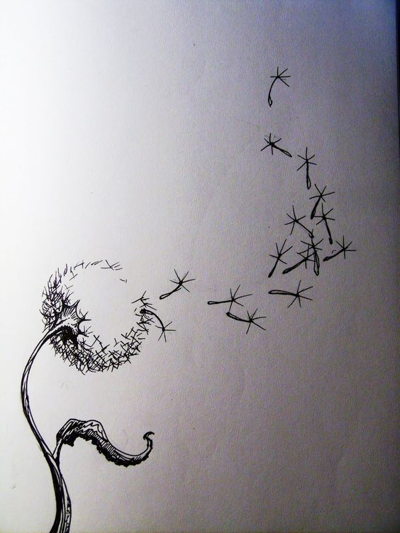 dandelion spreading seeds and inspiration