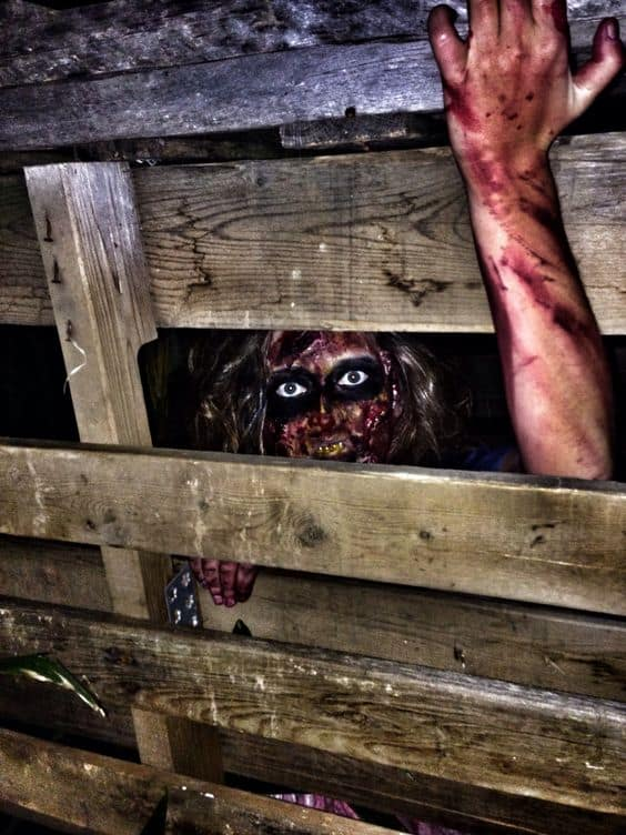 60. CREEPY WOMAN TRAPPED IN A WOODEN CRATE