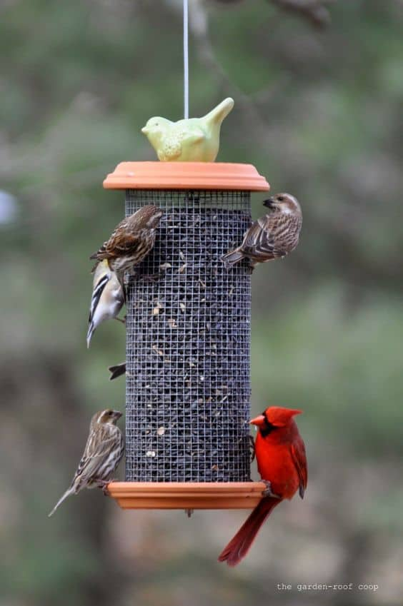 STANDARD TOWER FEEDER