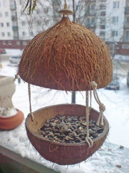 GOURD OR COCONUT SHELL FEEDER