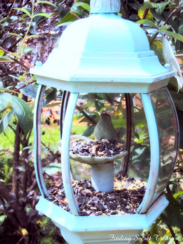LAMP BIRD HOUSE