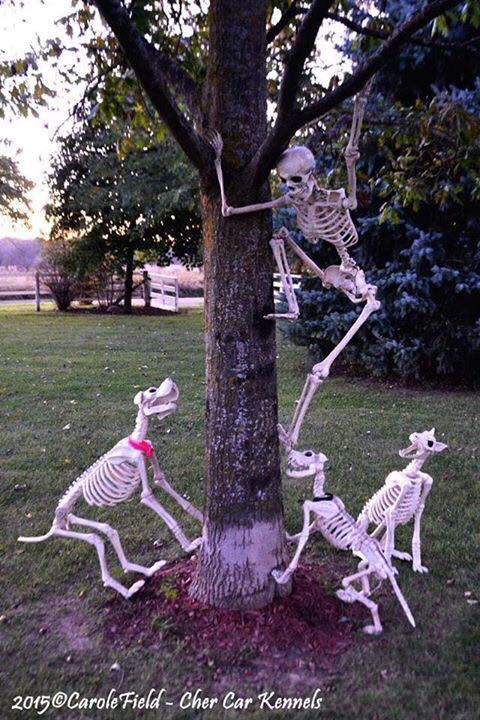 39. FUN WITH SKELETONS