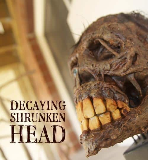 70. DECAYING SHRUNKEN HEAD