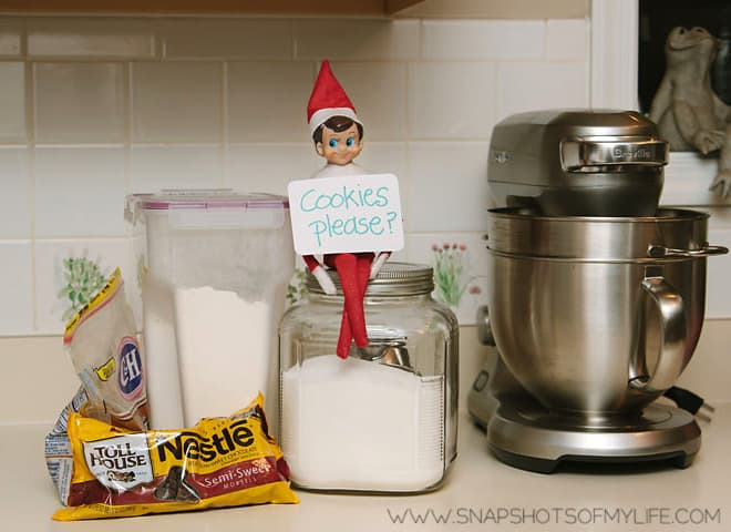 116. Elfie in the Kitchen