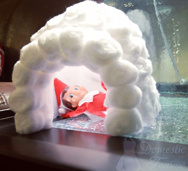 115. Elfie enjoying his Igloo