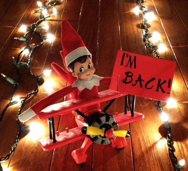 63. Elfie on the Landing Strip