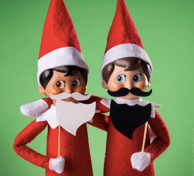 75.Elfie trying out the Bearded Look