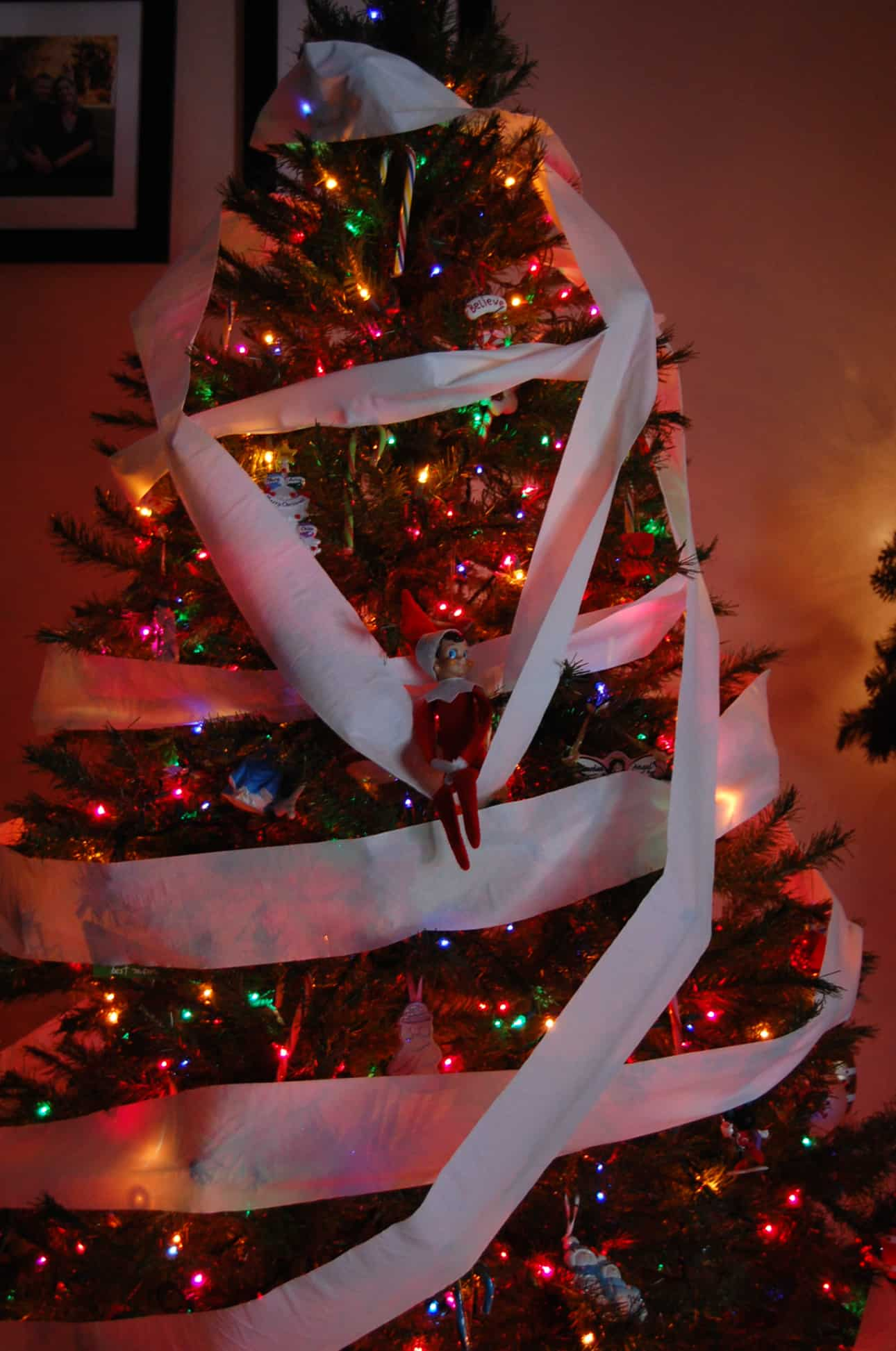 96.Elfie decorates the Christmas Tree with Toilet Paper